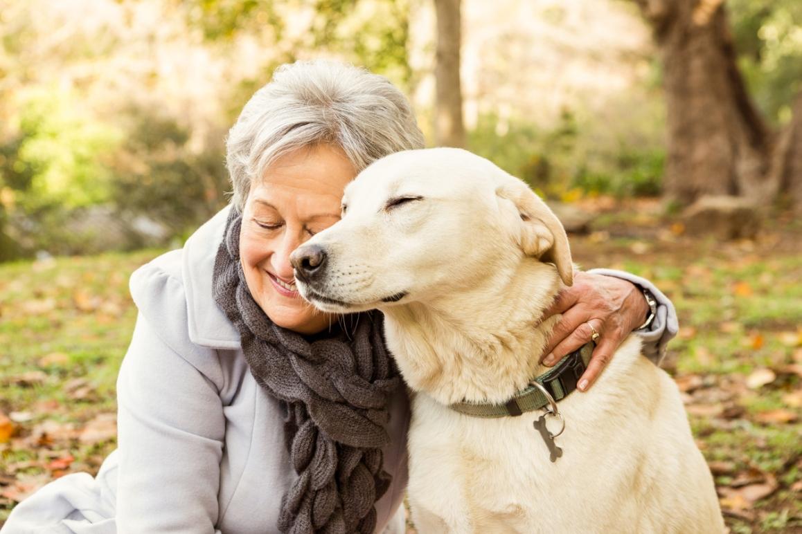 hundebetreuung achtsam ganzheitlich